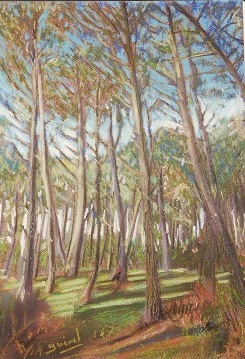 arbres-landes